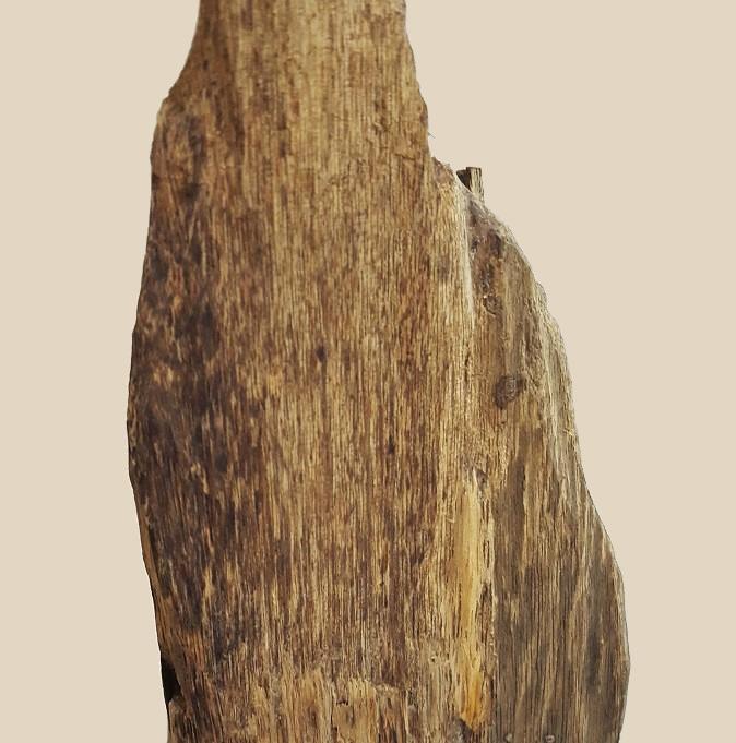 Cây cảnh nhỏ Việt Nam 0,71 kg